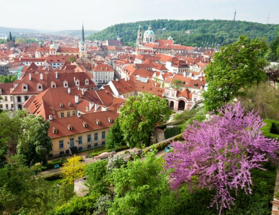 6 top activities for springtime in Prague with kids